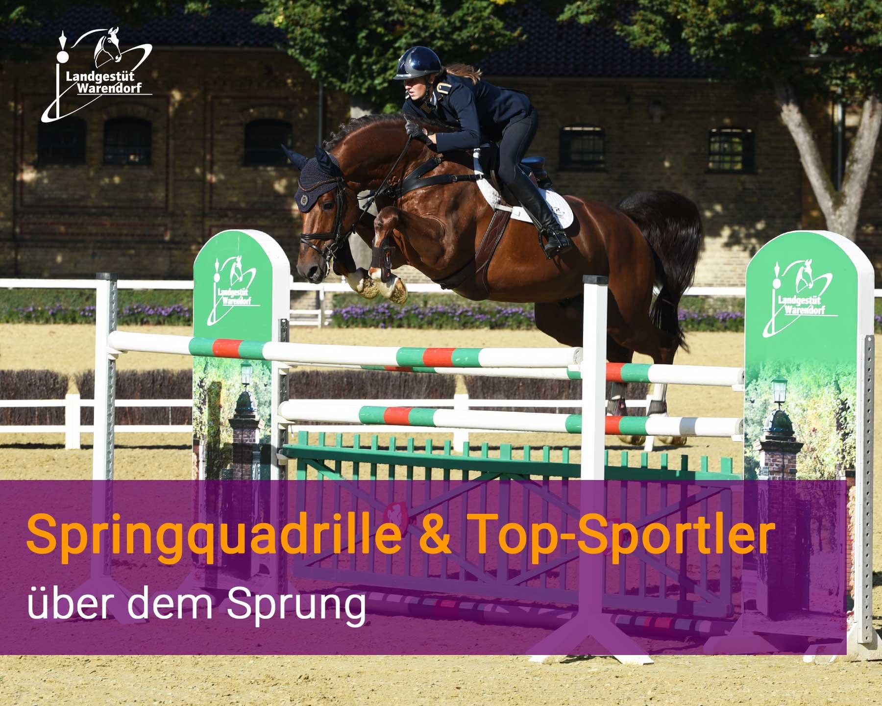 Springquadrille & Top-Sportler über dem Sprung