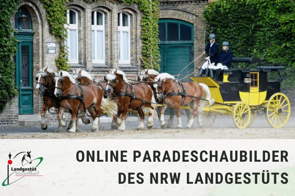 Online Paradeschaubilder des NRW Landgestüts