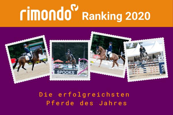 Das rimondo Ranking 2020 ist da!
